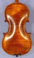 Beginner's Violin in Vancouver, BC
